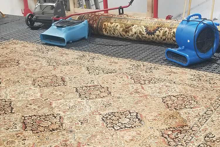 healthy home area rug cleaning spa floor shop best in colorado4